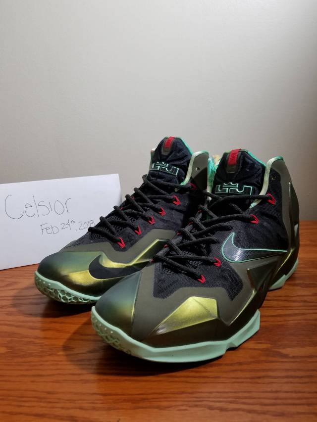 info for ab56c 7eff4 Nike LeBron 11 - Kings Pride