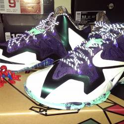 Ds lebron 11 asg gator king ms...