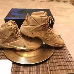 Lebron xii wheat exp