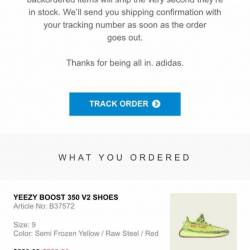 Yeezy 350 boost yebra yellow