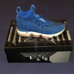 Nike lebron 15 hardwood classics