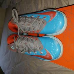 "Nds kd 6 ""maryland blue crab"""