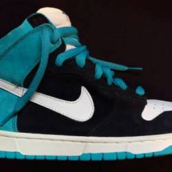 Send help -nike sb dunk high pros