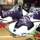 DS Lebron 11 ASG Gator King MSG for $200 Shipped